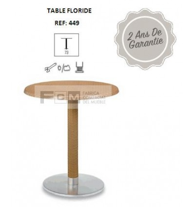 Table FLORIDE